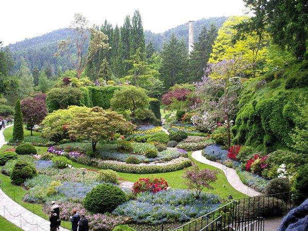 как добратся до Национального ботанического сада