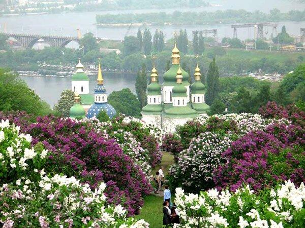 Национальный ботанический сад в Киеве
